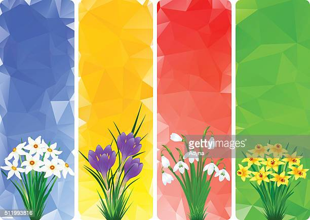 spring flower - narcissus mythological character stock illustrations, clip art, cartoons, & icons