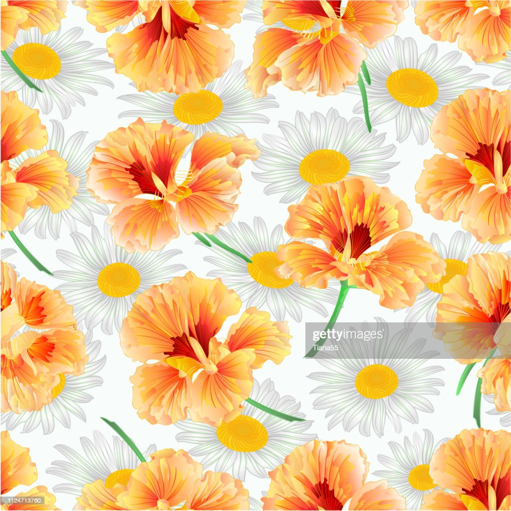 Spring flower watercress and daisies natural background vintage vector illustration  editable