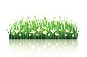 http://www.istockphoto.com/vector/spring-flowerbed-isolated-gm685907584-126156791