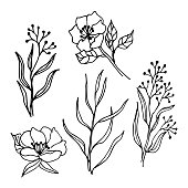 Spring flowers and branches line art drawing set.