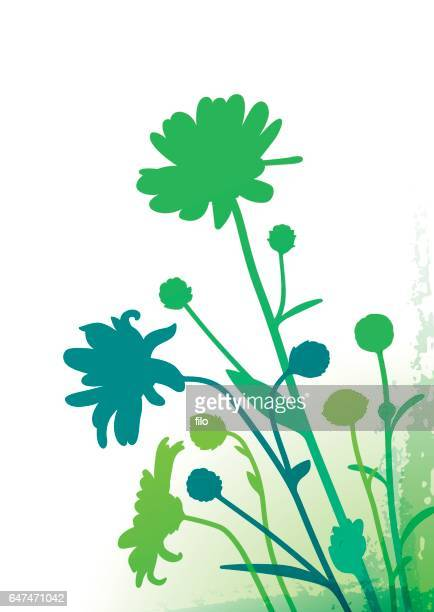 Spring Flowers and Plants Corner Abstract