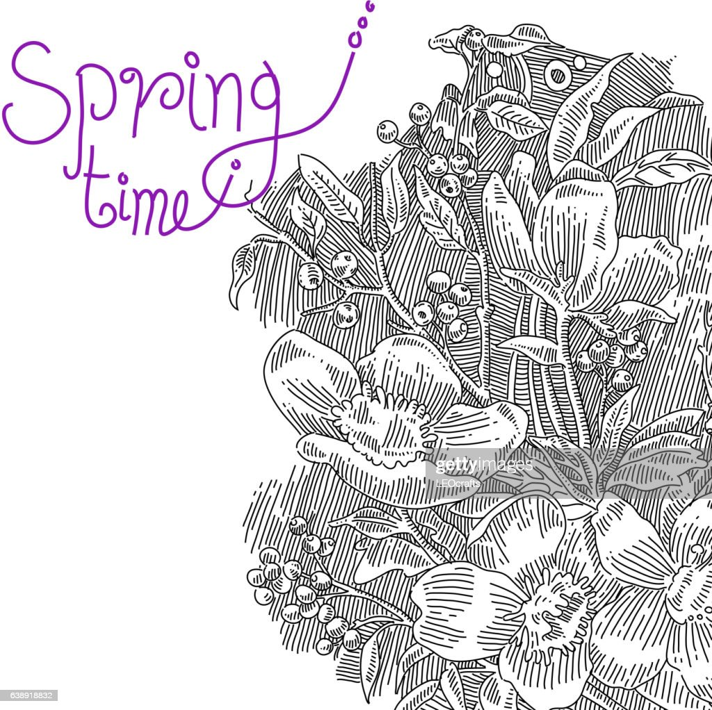 Spring Flowers Drawing Vector Art Getty Images