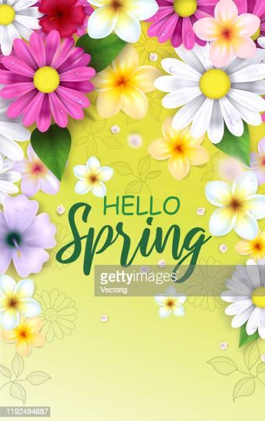 spring flowers illustration - springtime stock illustrations