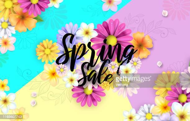 spring flowers illustration - flower head stock illustrations