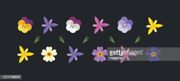 illustrations, cliparts, dessins animés et icônes de ensemble de fleurs de printemps. - fleur
