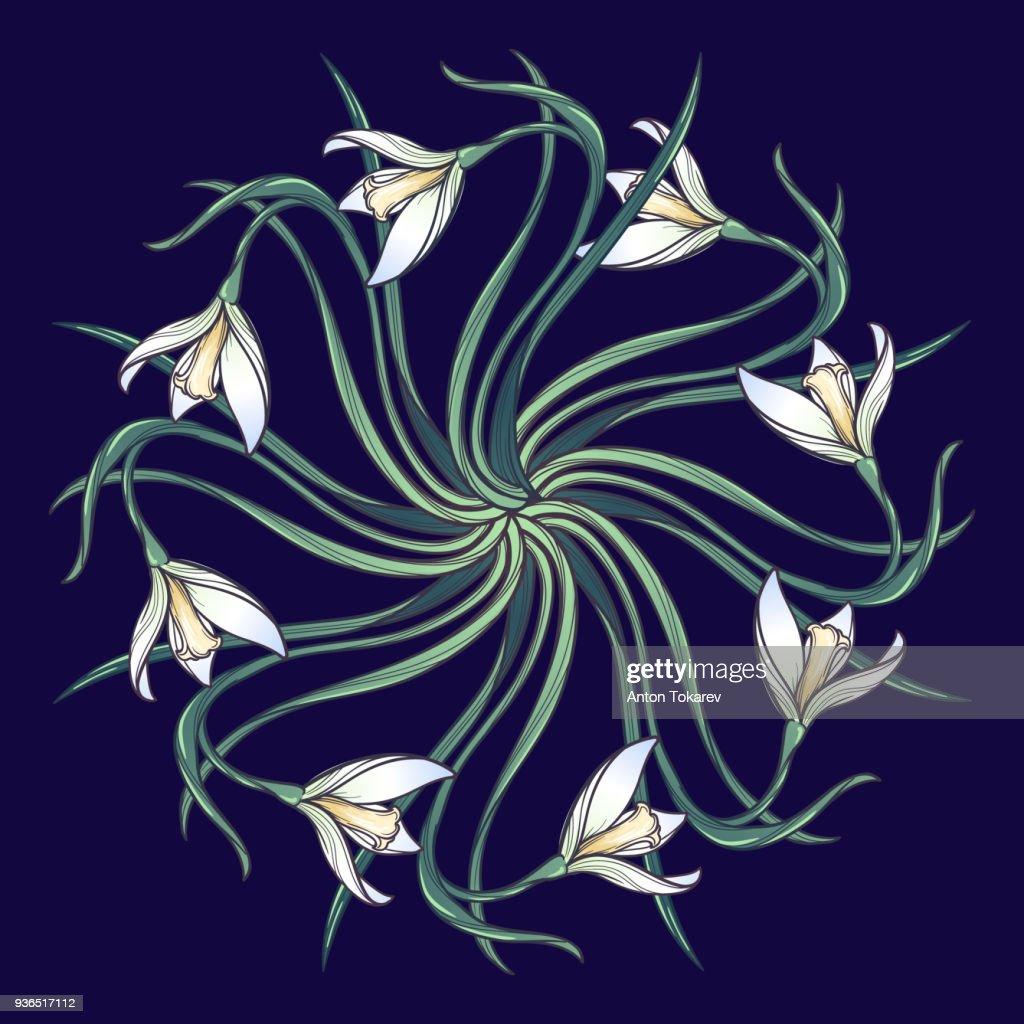 Spring flowers. Snowdrop flowers interlaced into an intricate circular ornament on a dark blue background. Art Nouveau style drawing. Mandala tattoo design.