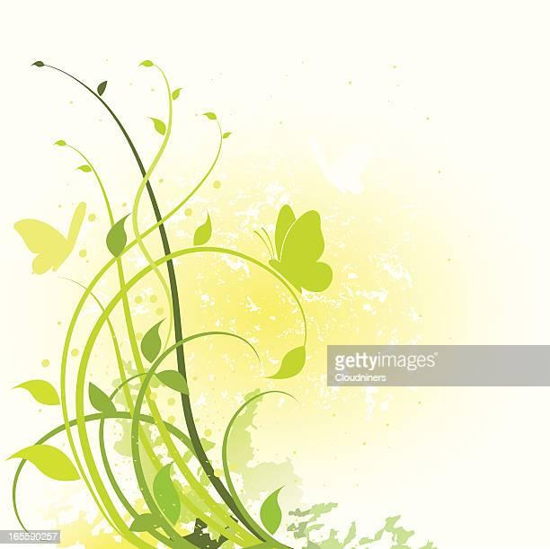 spring foliage - embellishment stock illustrations