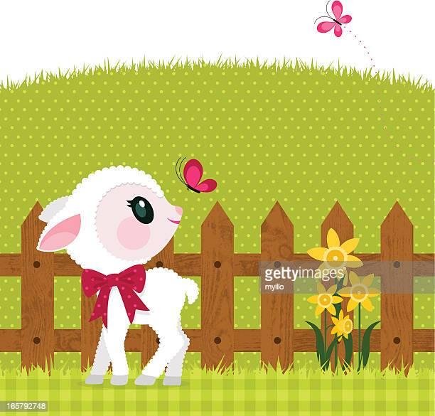 Frühling-Lamm
