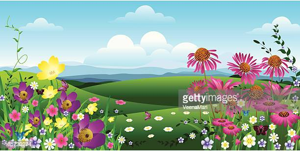 spring landscape - gerbera daisy stock illustrations, clip art, cartoons, & icons