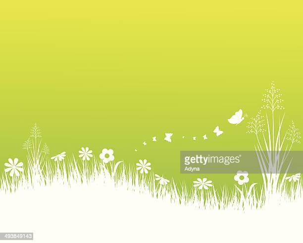 stockillustraties, clipart, cartoons en iconen met spring landscape - ochtend