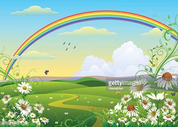ilustraciones, imágenes clip art, dibujos animados e iconos de stock de paisaje de primavera con rainbow - planta de manzanilla