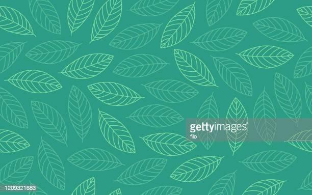 stockillustraties, clipart, cartoons en iconen met spring leaf naadloos achtergrondpatroon - leaf
