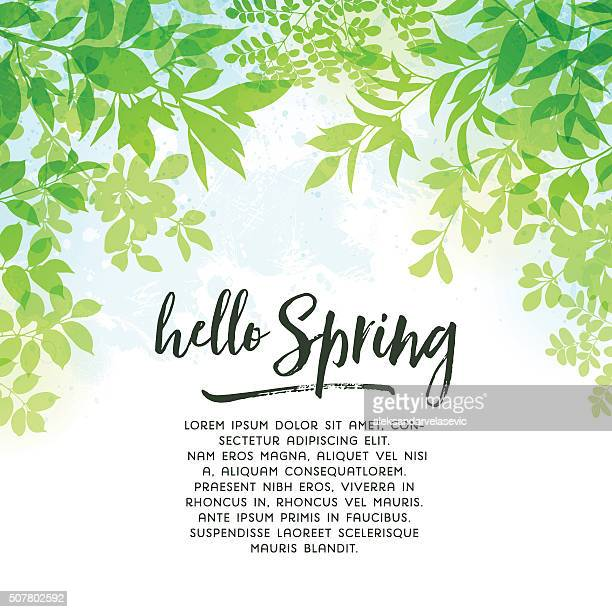 spring leaves background - lush foliage stock illustrations