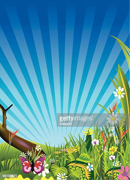 spring meadows background