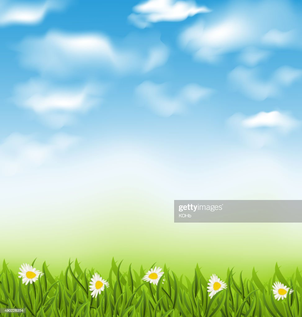 Spring natural background with blue sky, clouds, grass field and