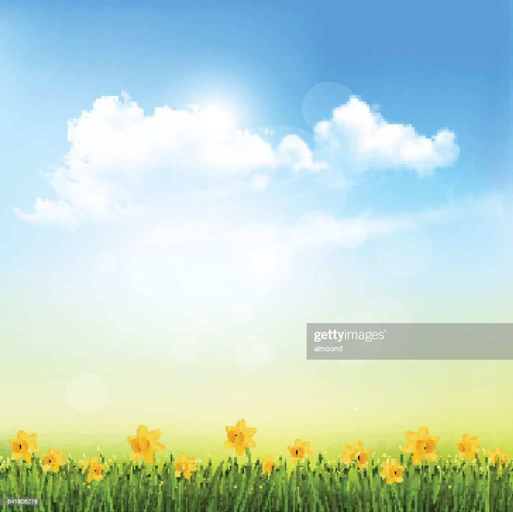 Spring Nature Background With A Green Grass And Blue Sky