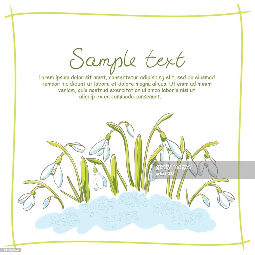 Spring postcard with hand-drawn snowdrops and sample text on white background