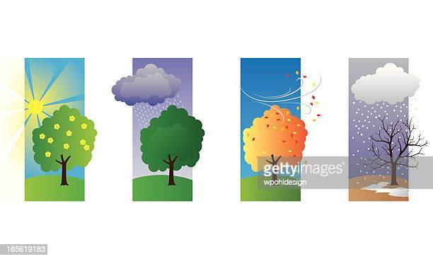 ilustraciones, imágenes clip art, dibujos animados e iconos de stock de primavera verano, otoño, invierno - las cuatro estaciones