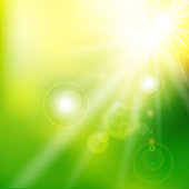 Spring summer sunlight flare abstract green color background. Vector