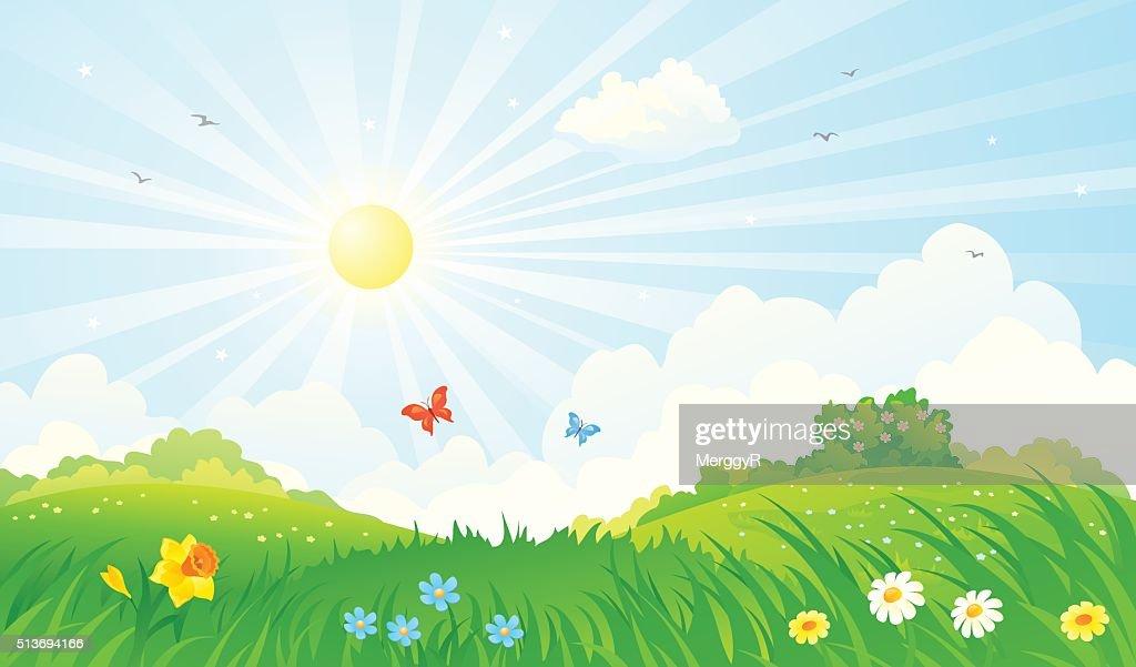 Spring sunny landscape