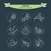 Spring thin line vector icons