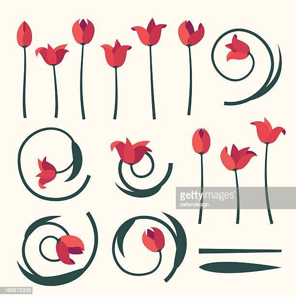 チューリップの春コレクションです。