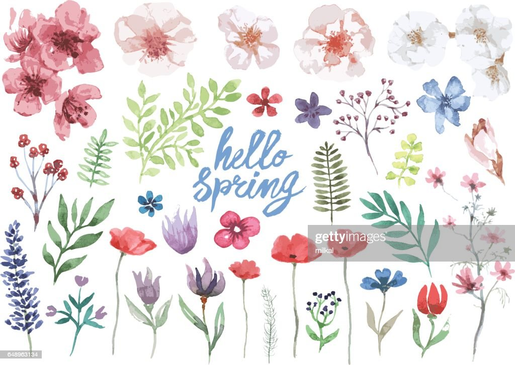Spring watercolor floral collection