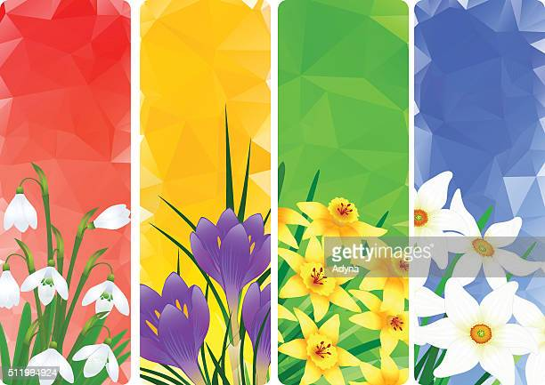 springtime - narcissus mythological character stock illustrations, clip art, cartoons, & icons