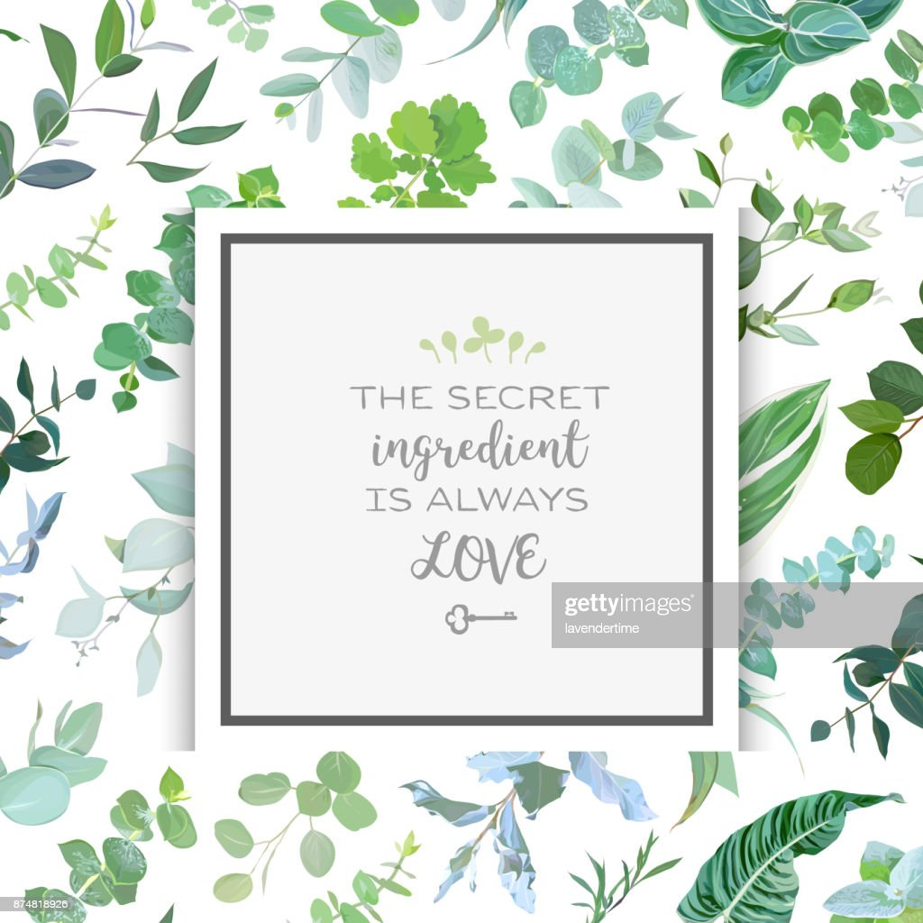 Square botanical vector design frame