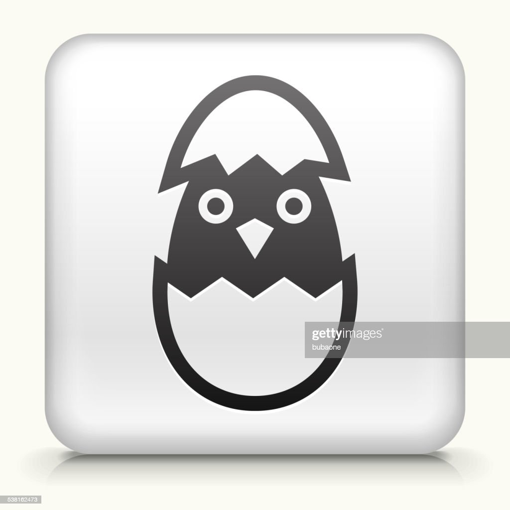 Square Button with Hatching Bird