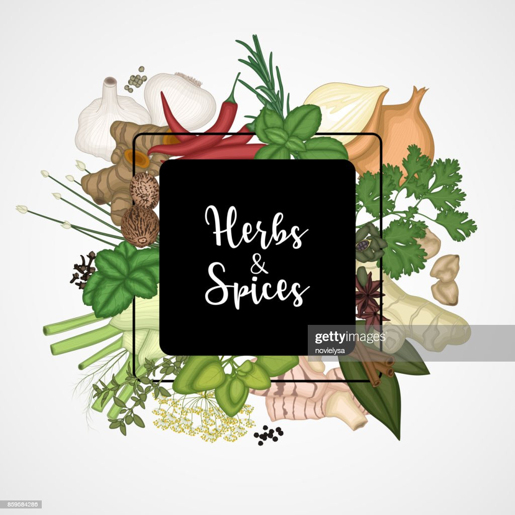 Square design background with spices and herbs