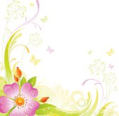 Square flower background with copyspace: pink Wild Rose
