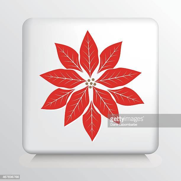 ilustraciones, imágenes clip art, dibujos animados e iconos de stock de square icono con una gran rojo y blanco poinsetta silueta - flor de pascua