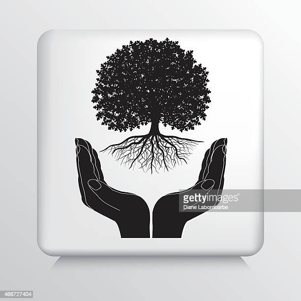 Square Icon With Two Hands Cupping a Deciduous Tree Growing