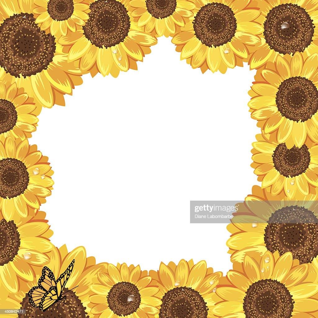 Square Sunflower Frame With Butterfly Vector Art | Getty Images