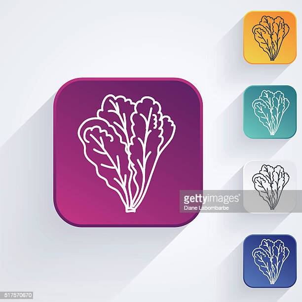 Square Vegetable Thin Line Art Icon Set - Romaine Lettuce