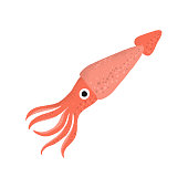 Squid animal cartoon character. Cartoon vector hand drawn eps 10 illustration isolated on white background in a flat style.