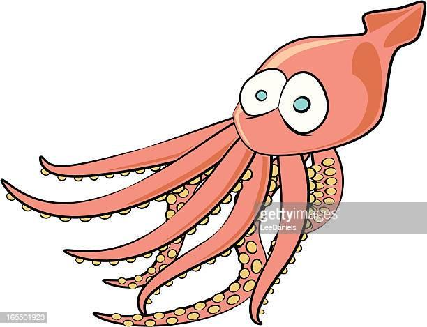 Squid Cartoon