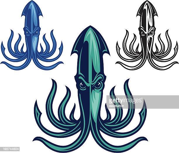 Squid Crazy