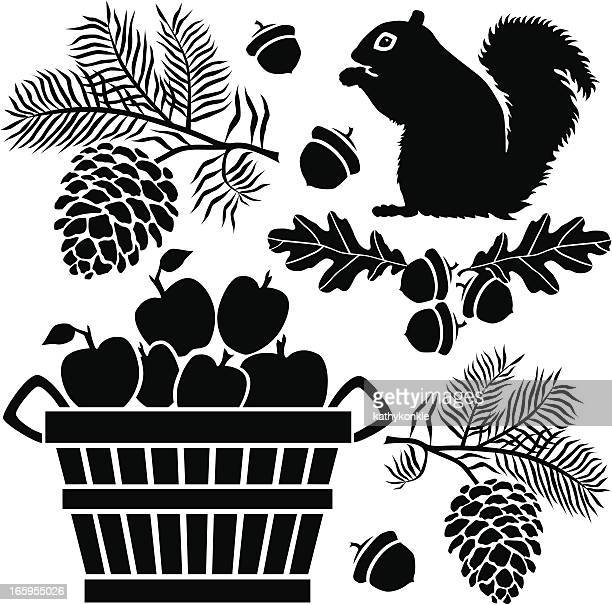 squirrel and bushel of apples - squirrel stock illustrations