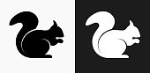 Squirrel Icon on Black and White Vector Backgrounds