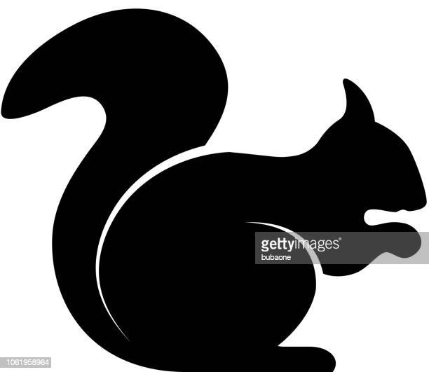 squirrel icon with long shadow - squirrel stock illustrations