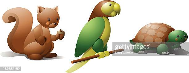 Squirrel, parrot and turtle