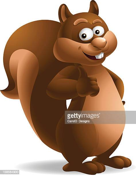squirrel: thumbs up! - chipmunk stock illustrations