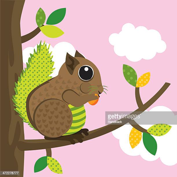squirrel - chipmunk stock illustrations