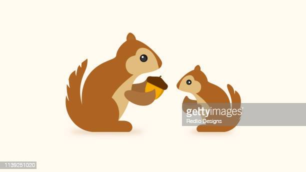 squirrel with acorn icon - one animal stock illustrations
