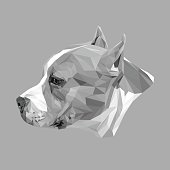 Stafford dog animal low poly design. Triangle vector illustration.