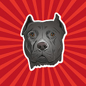 Staffordshire bullterrier hand drawn, vector illustration