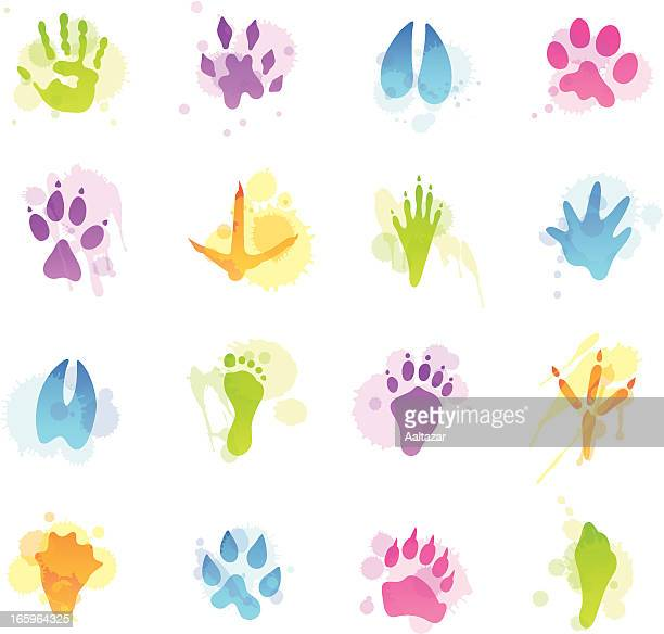 stains icons - animal tracks - animal track stock illustrations, clip art, cartoons, & icons