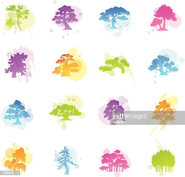 stains icons - trees species - cedar tree stock illustrations, clip art, cartoons, & icons